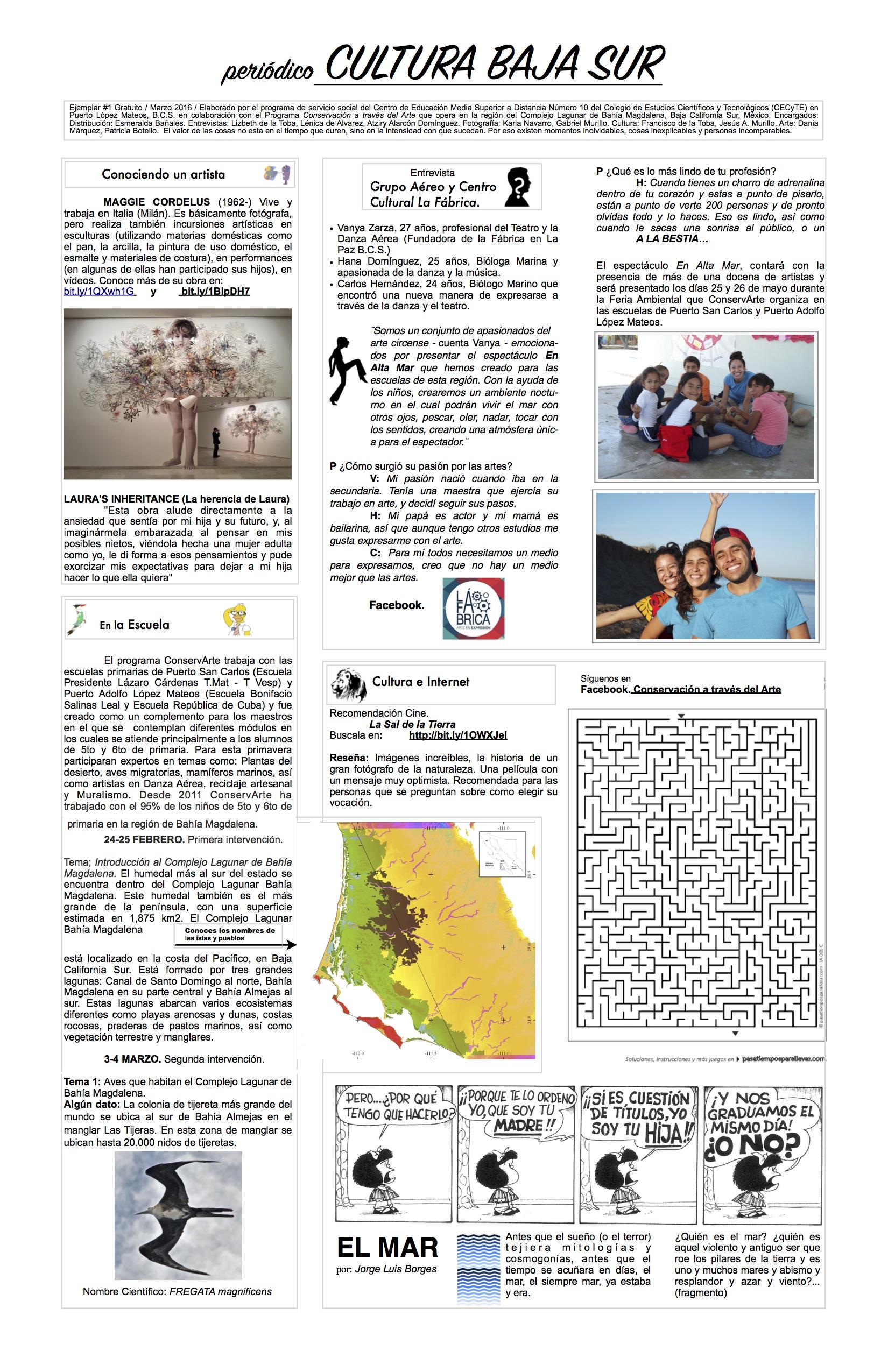 periodico-cultura-baja-sur-1